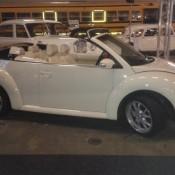 Auperle Beetle Cabrio